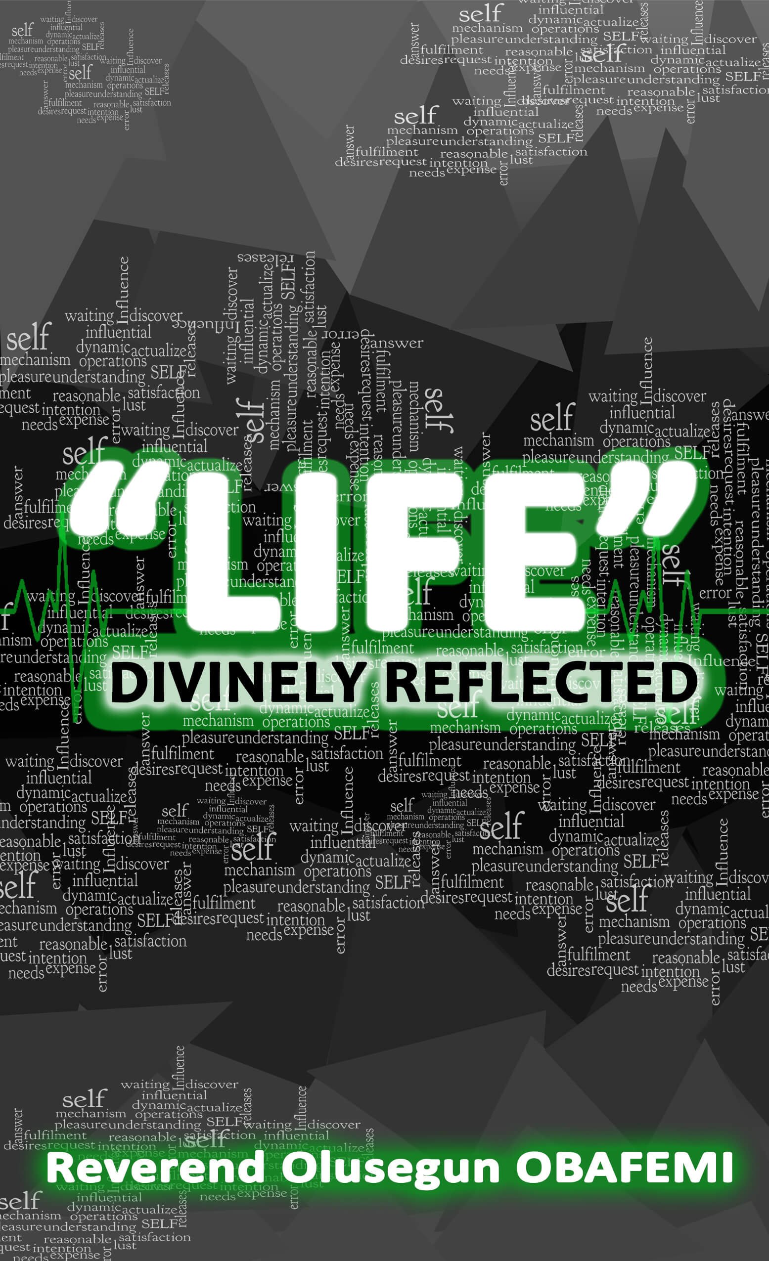 LIFE: Divinely Reflected book cover